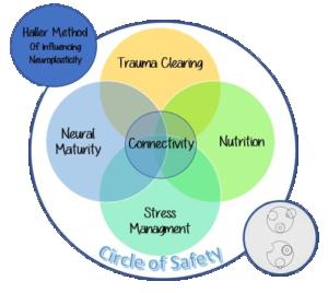 Haller Method Visual